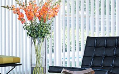 Choosing the next window blinds and shades for your home